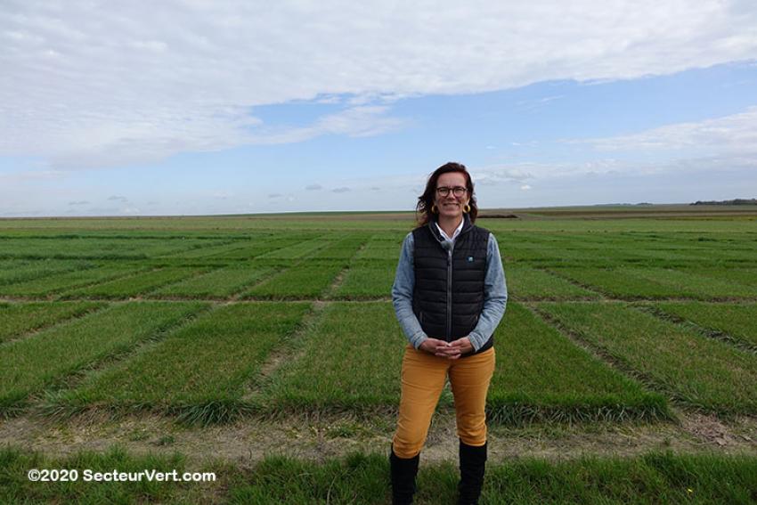 BARENBRUG : Comment sont produites les semences à gazon ? La station de recherche de Connantre... Des parcelles de tests en plein champ (3/5)