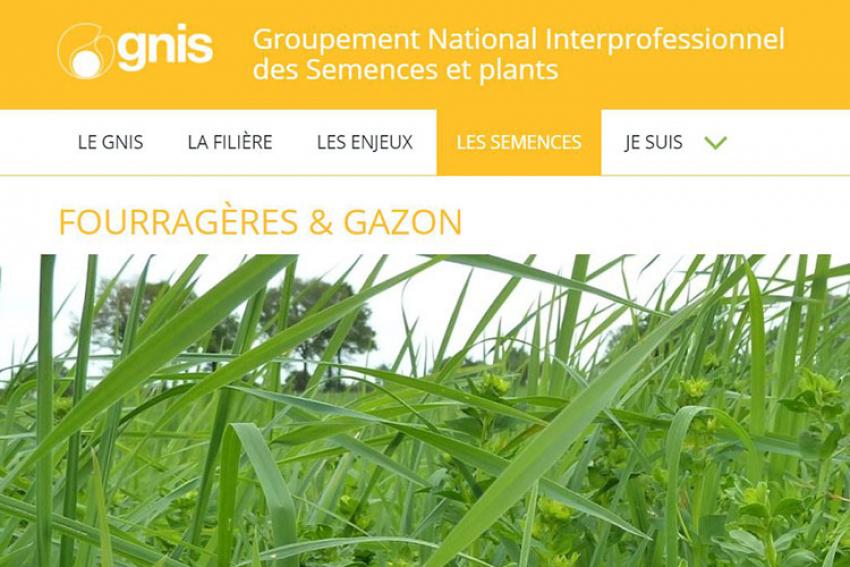 GNIS-Groupement National Interprofessionnel des Semences et plants : « Comment distinguer la qualité et choisir le gazon le mieux adapté », découvrez conseils et témoignages en vidéo !