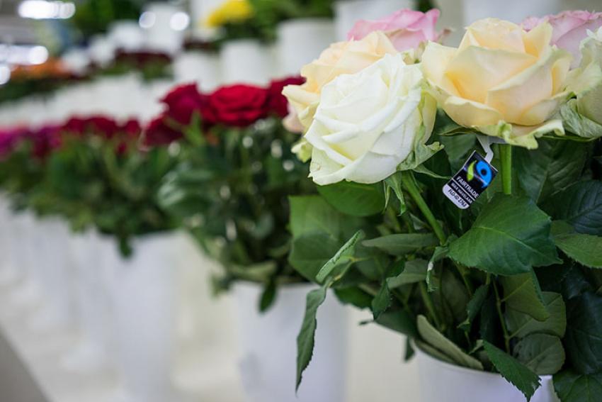 FAIRTRADE/MAX HAVELAAR : La fleur « équitable », une réponse pour soutenir une filière horticole ébranlée par la crise mondiale de la COVID-19