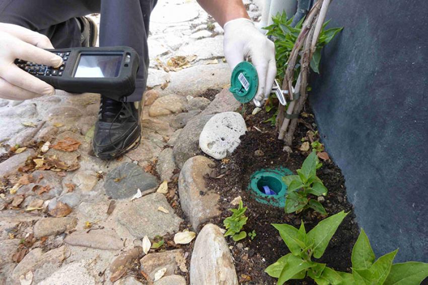SENTRI TECH : Comment protéger sa maison des termites ? Découvrez les conseils de Stan Buckley, biologiste expert en termites chez Agro Biocide Consult