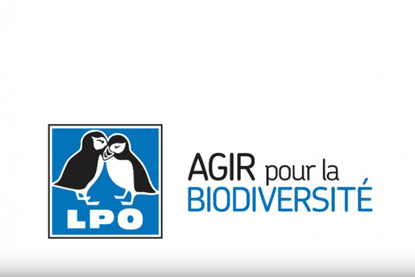 LPO FRANCE : En 2019, la Ligue pour la Protection des Oiseaux s'engage au nom de la biodiversité dans le grand débat national