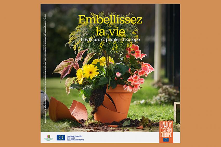 VAL'HOR : Découvrez la campagne de promotion '2021' conjointe pour les fleurs et plantes européennes et « Embellissez la vie » pour la relance du secteur de la floriculture