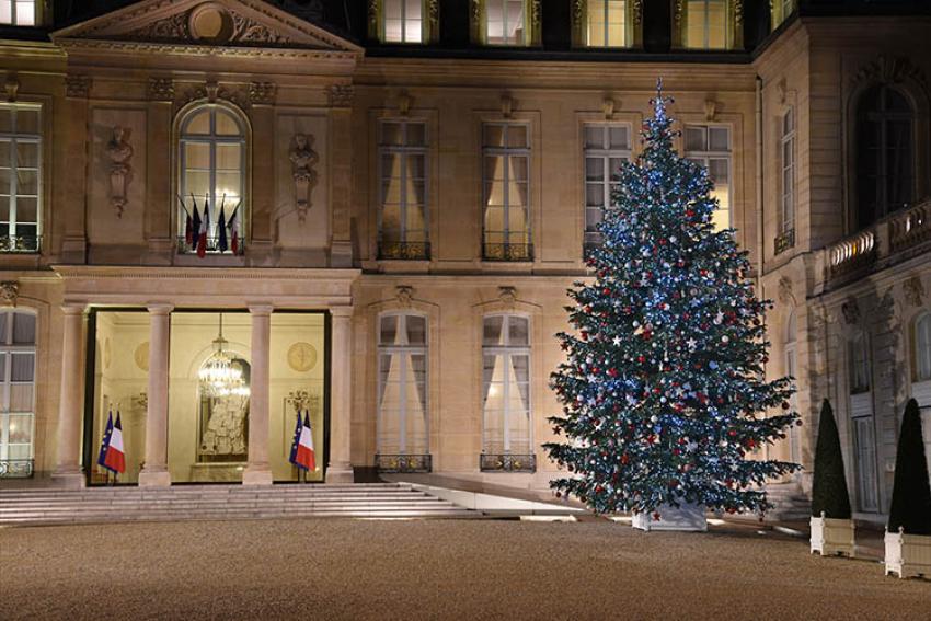 VAL'HOR- AFSNN : Dimanche 6 décembre 2020, illumination du sapin de Noël de l'Élysée, symbole de l'excellence de la filière horticole française