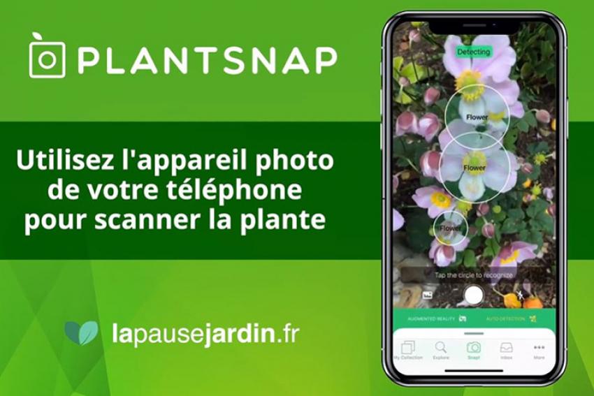 EVERGREEN GARDEN CARE : Signature d'un partenariat exclusif avec l'application PLANTSNAP pour photographier, identifier et apprendre à bien planter en toute simplicité