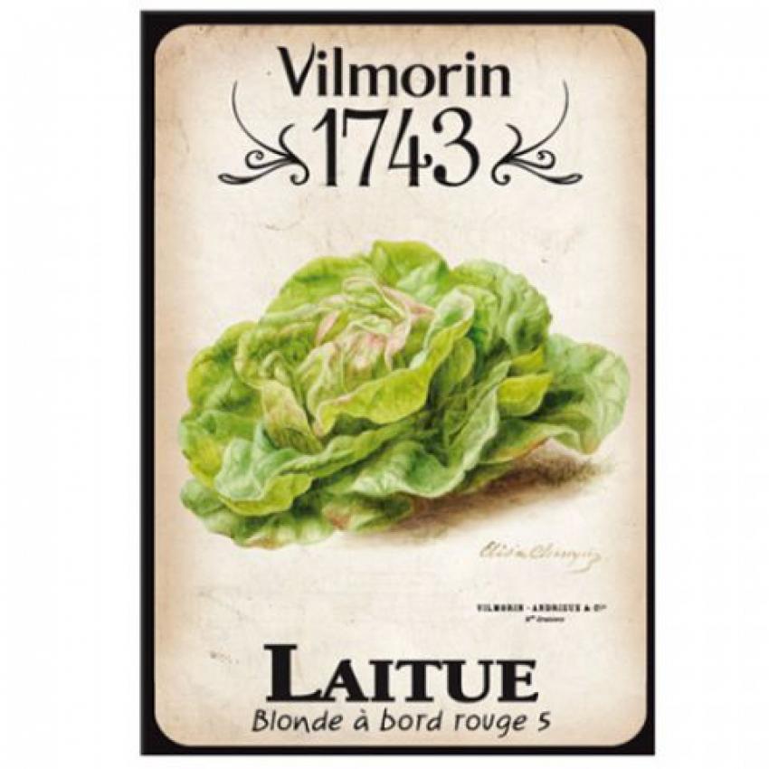 VILMORIN JARDIN : En 2018, Vivaplante et Horti Flandre vont produire et distribuer des plants amateurs à marque Vilmorin pour potagers ou balcons-terrasses (Les Essentiels, Les Généreux et Les d'Autrefois)