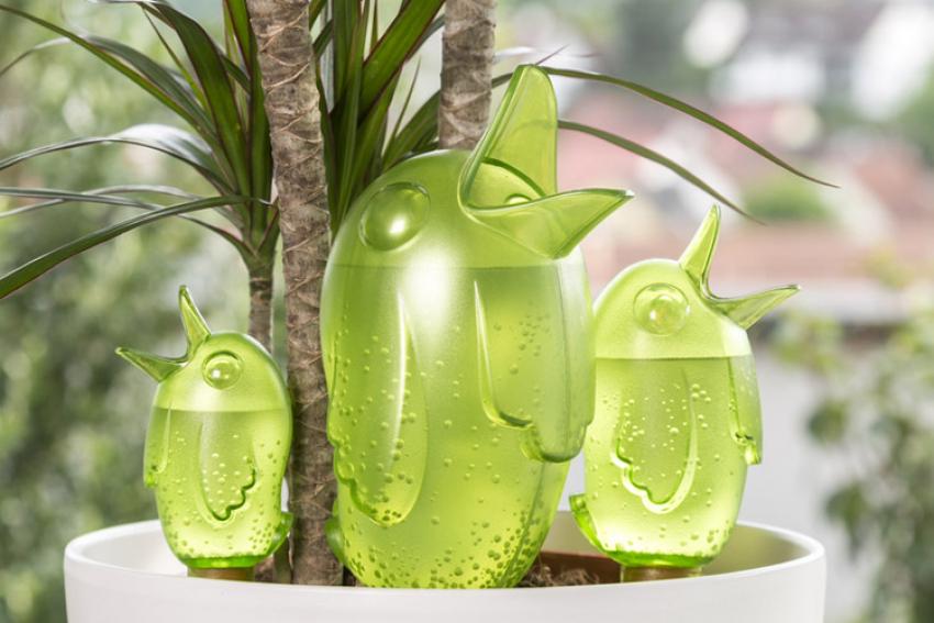 SCHEURICH : les accessoires d'arrosage Bördy, Froggy et Copa sont conçus pour arroser les plantes d'intérieur et d'extérieur durant un week-end ou bien plusieurs jours de vacances