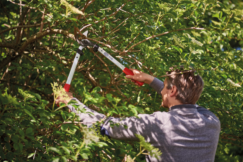 FELCO : Le nouvel élagueur polyvalent «Swiss Made» FELCO 211, doté d'une tête de coupe innovante, est adapté pour tous types de travaux de jardinage, d'arboriculture, de paysagisme, de viticulture ou d'entretien des parcs et jardins