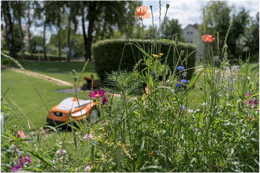 STIHL FRANCE : Une étude de l'Université de Hohenheim, à Stuttgart (N°1 en Allemagne dans la recherche agricole) réalisée avec STIHL montre l'effet positif des robots de tonte sur la biodiversité