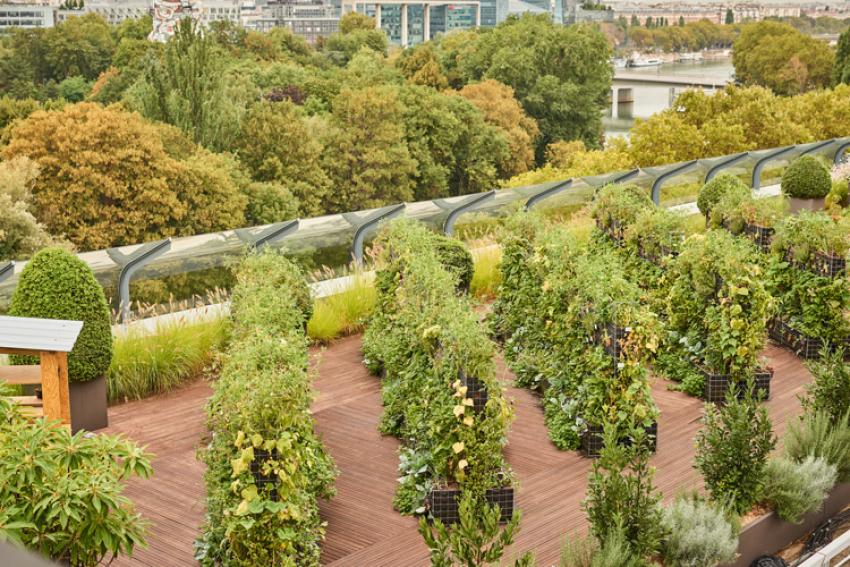 PARLY 2 : Une ferme potagère sur le toit du centre commercial avec 220 parcelles de 3 m² mises à disposition des riverains et des Franciliens, en partenariat avec la start-up Peas & Love, dès le 15 juin 2019
